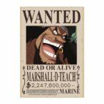 Boutique One Piece Avis de Recherche 21X30cm Avis de Recherche One Piece Marshall D. Teach Wanted