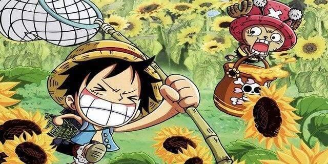 Boutique One Piece Serviette 35x70cm Serviette One Piece Kawaii Luffy Et Chopper